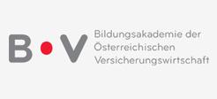 logo-boev_at